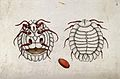 A beetle larva; dorsal and ventral aspect and egg. Coloured Wellcome V0022502.jpg