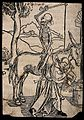 A skeleton sits backwards on a horse waiting for a blacksmit Wellcome V0042072.jpg