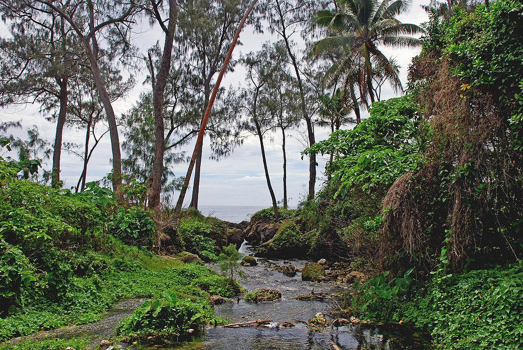 Aliran sungai di Pulau Efate.