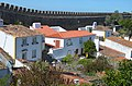 A walk along the walls of Óbidos V (40565052705).jpg