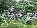 Abandoned Farm Buildings at Dinas, Cwm Doethie, Ceredigion - geograph.org.uk - 512083.jpg