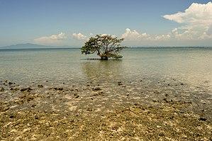 Rembang Regency - Java Sea coast in Rembang Regency.