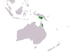 Range of Acacia mangium