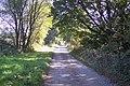 Access road towards Three Chimneys (2) - geograph.org.uk - 1512610.jpg