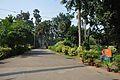 Acharya Jagadish Chandra Bose Indian Botanic Garden - Howrah 2011-01-08 9883.JPG