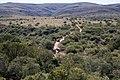 Addo Elephant Park, Eastern Cape (6252665495).jpg