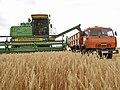 Agriculture in Volgograd Oblast 001.JPG