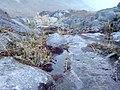 Agua del nevado del Ruiz.jpg