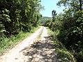 Alameda Cândido Brasil Moro - Palma - Santa Maria, foto 13 (sentido S-N).jpg - panoramio.jpg