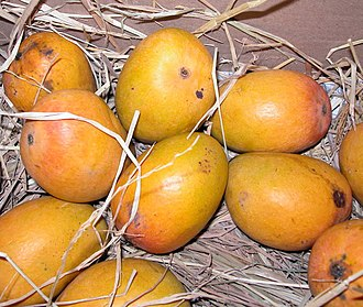 Mango - Alphonso mangoes, named after Afonso de Albuquerque, who introduced the fruit to Goa