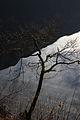 Altausseer See 78902 2014-11-15.JPG