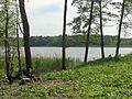 Alter Dorfsee (Krakow am See).JPG