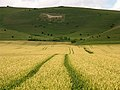 Alton Barnes, Farmland and White Horse - geograph.org.uk - 506493.jpg