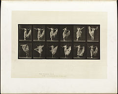 Animal locomotion. Plate 187 (Boston Public Library).jpg