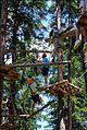 Anzeige Kletterwald 2011 Kopie.jpg