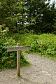 Appalachian Trail at Clingman's Dome - panoramio.jpg