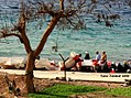 Aqaba, Southern Jordan 2012 17.jpg