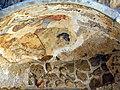 Archeological park Salamis 08.jpg