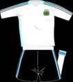 Argentina home kit2008.png