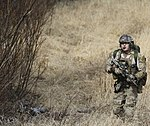 Army Air Force joint training 150429-A-WX507-092.jpg