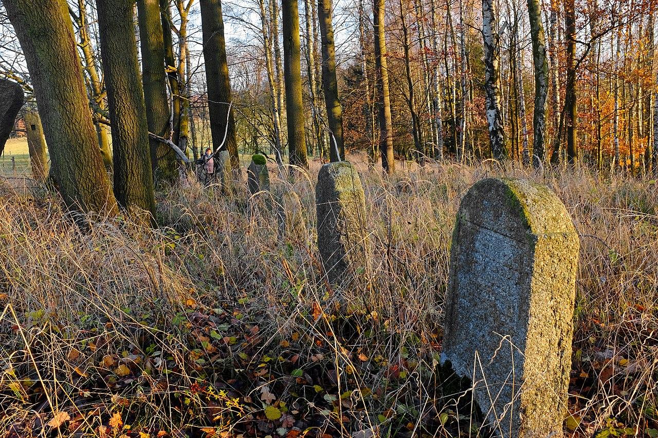 Arnoltov židovský hřbitov listopad 2019 (1).jpg