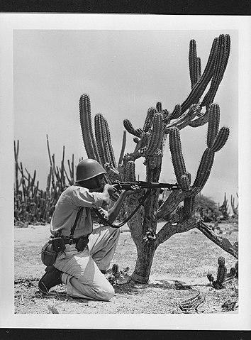 file arubaanse soldaat in de kuruku richt zijn geweer met