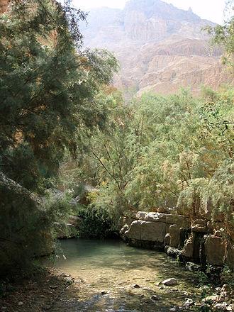 Oasis - Image: Arugot River