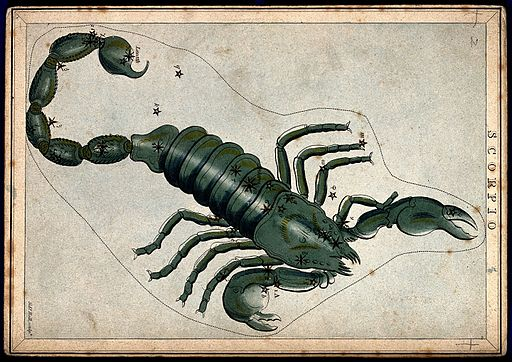 Astrology; signs of the zodiac, Scorpio. Coloured engraving. Wellcome V0024929