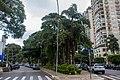 At São Paulo 2018 069.jpg