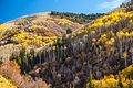 Autumn colours in SW Utah - Hwy 31, along Cottonwood Creek, Utah (15467992377).jpg