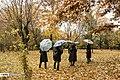Autumn in Eram Garden 2019-12-09 04.jpg