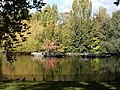 Autumnal reflections in the lake - geograph.org.uk - 1075776.jpg