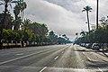 Avenida de la palmera 2017003.jpg