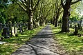 Avenue in Southern Cemetery, Manchester-geograph-4520291-by-Bill-Boaden.jpg