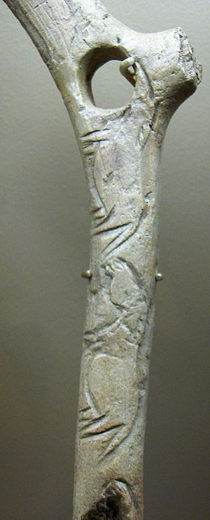 Bâton de commandement - Baton with engraved wild horses from Abri de la Madeleine