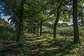 BELGIUM (in Explore) - Flickr - WeVe1.jpg