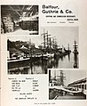 Balfour, Guthrie & Co Shipping Merchants (1904) (ADVERT 458).jpeg