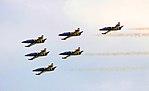 Baltic Bees airbatic team.jpg