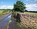 Bannister Lane Skelbrooke - geograph.org.uk - 864922.jpg