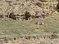 Barakajur river 17.jpg