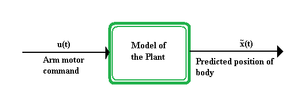 Internal model (motor control) - Forward model of an arm movement. The motor command, u(t), of the arm movement is input to the plant and the predicted position of the body, x̃(t), is output.