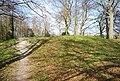 Bell Barrow, Shoulder of Mutton Wood - geograph.org.uk - 1843180.jpg