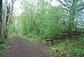 Bench by the Downs Link - geograph.org.uk - 1878646.jpg