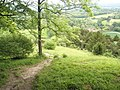 Bend in the path atop Shoulder of Mutton Hill - geograph.org.uk - 1324435.jpg