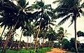 Bentota Beachside - panoramio (6).jpg