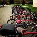 Bicicletas en Facultad de Comunicación.jpg