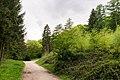 Bielefeld - 2015-05-08 - LSG-4017-0007 Trockensenne (1).jpg