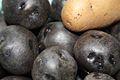 Blak potato1.jpg