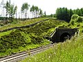 Bleamoor Tunnel - geograph.org.uk - 1371714.jpg
