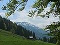 Blick zum Steineberg - panoramio.jpg